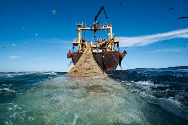 overfishing-1200x798.jpg